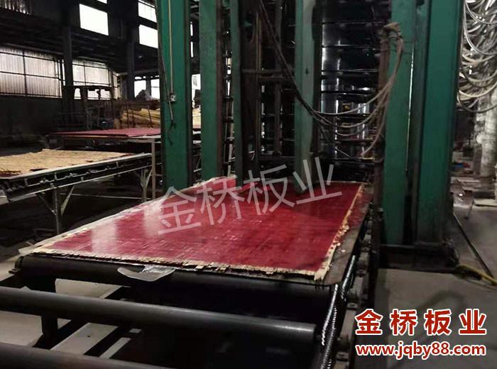 金桥板业竹胶板厂家