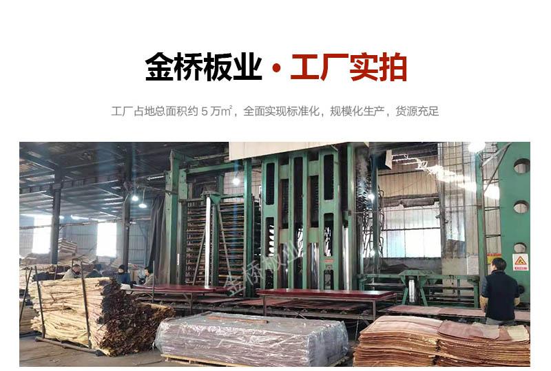金桥板业桥梁竹胶板多少钱一张工厂实拍